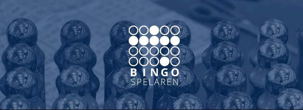 Allt om bingo